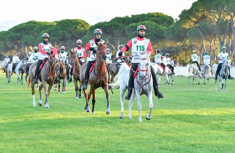 نائب رئيس الدولة يشهد تتويج فرسان الامارات أبطالا في مهرجان محمد بن راشد للقدرة في إيطاليا