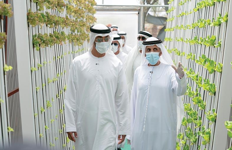 محمد بن زايد يؤكد أهمية توظيف التكنولوجيا الحديثة في القطاع الزراعي في الدولة وفق معايير الاستدامة والجودة والتنافسية