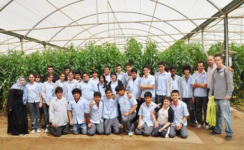 طلبة المدارس يشاركون في جني ثمار مزارع العين