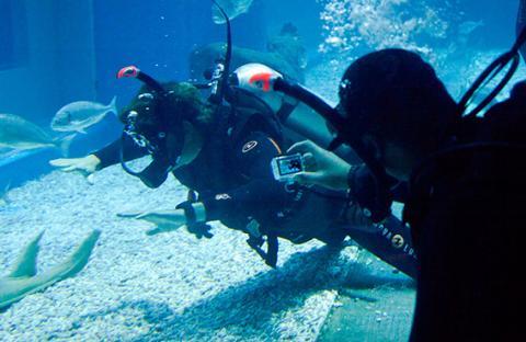 دبي أكواريوم وحديقة الحيوانات المائية يقدم باقة جديدة من عروض الغوص