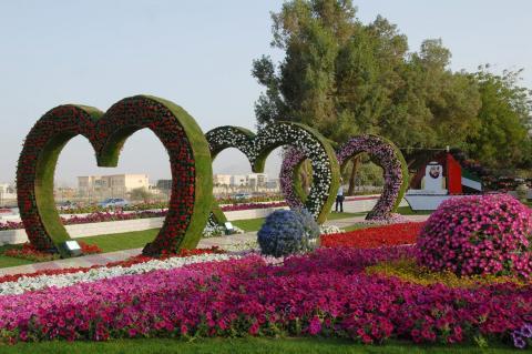 مدينة العين تفوز بالمركز الأول لجائزة تخضير المدينة ضمن جوائز منظمة المدن العربية