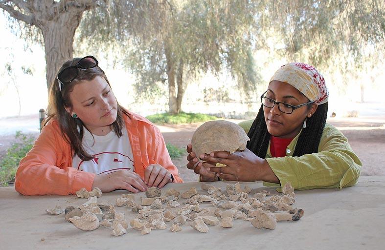 متاحف رأس الخيمة تحلل عظاما  عمرها 4000 سنة