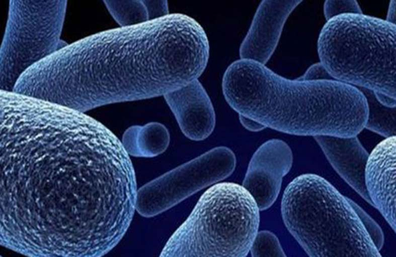 (البكتيريا الخارقة) تقاوم المطهرات الكحولية وتنذر بالخطر