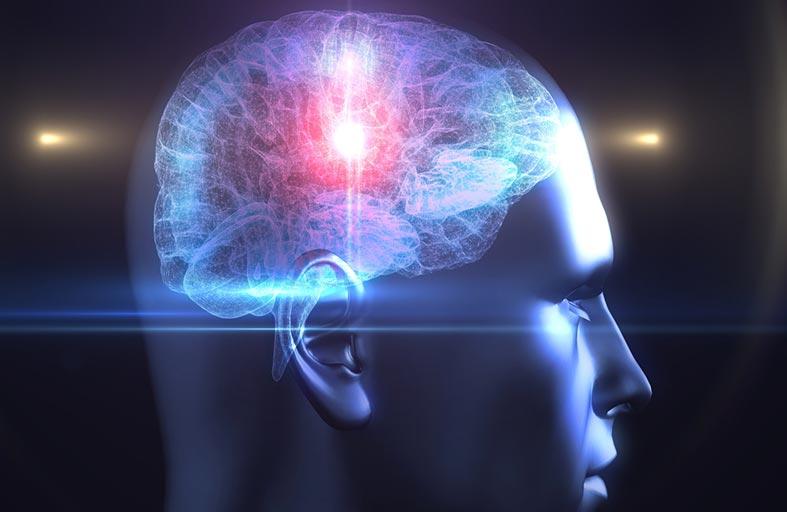 بفضل جهاز استشعار..  الخلايا الدماغية تتوهّج في الظلام