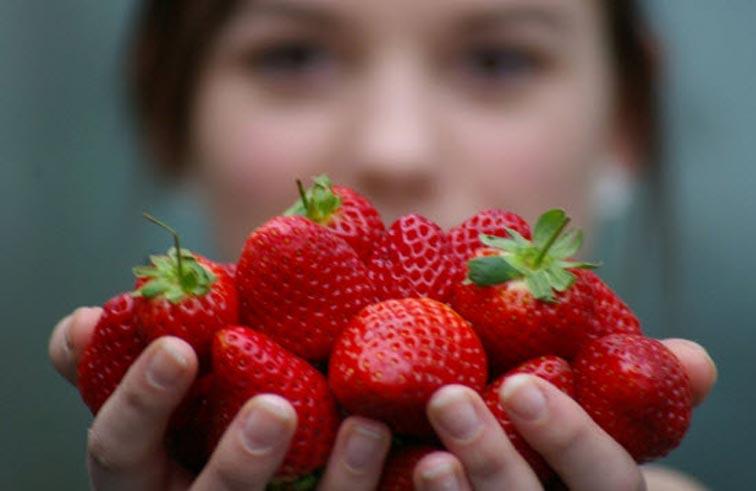 دراسة: الفراولة لعلاج أمراض التهاب الأمعاء المزمن