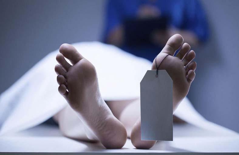 بعد الموت... الجسم .. مسيرة طويلة لتفكيك مكوناته