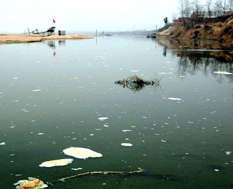 رجل أعمال يعرض 32 ألف دولار على أي مسؤول بيئي يسبح في نهر ملوث بالصين