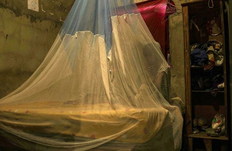 الصين قضت على الملاريا بعد معركة 70 عاماً