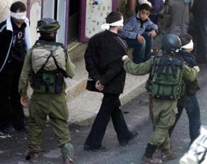 الاحتلال يعتقل 12 فلسطينياً في الضفة