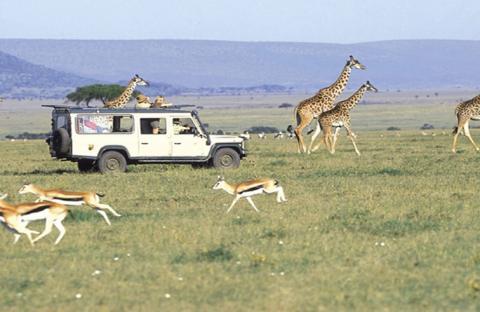 كينيا من اهم الدول على خريطة السياحة العالمية