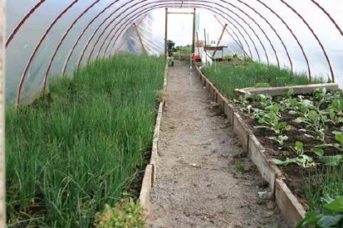 البيئة تعرض أسس ومعايير الزراعة العضوية على فريق فني من مركز خدمات المزارعين في أبوظبي