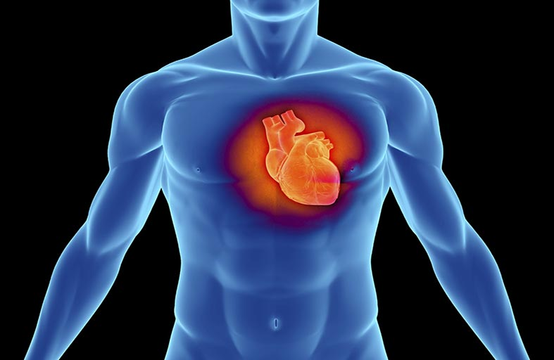 اعتلال عضلة القلب الضخامي الوراثي.. مؤشرات تحذيرية