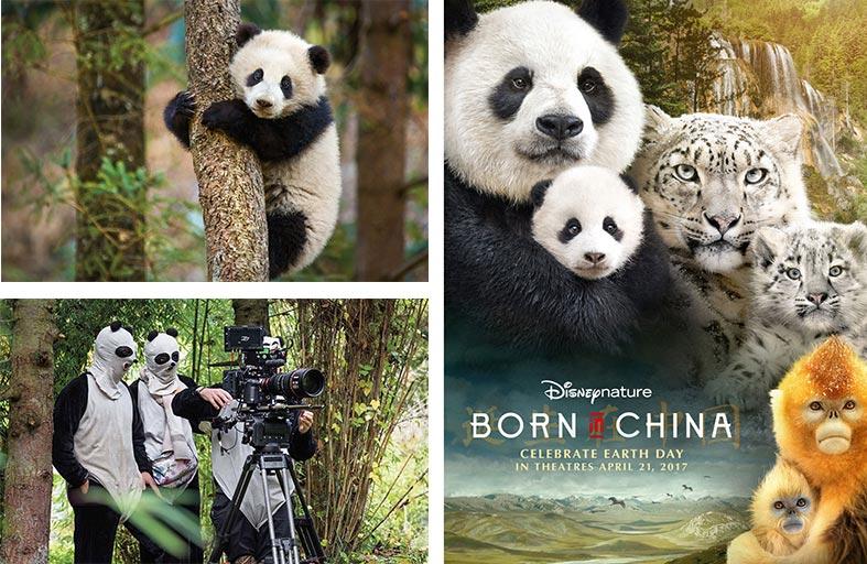 Born in China  فيلم وثائقي يخطف الأنفاس!