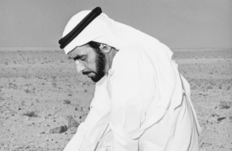 عام زايد الخير حكيم العرب
