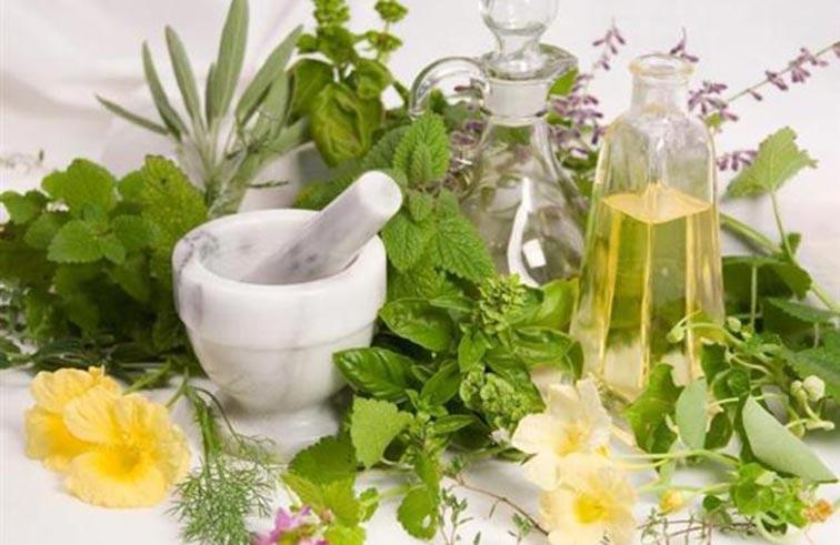 5 نباتات طبية تقوي الخلايا العصبية