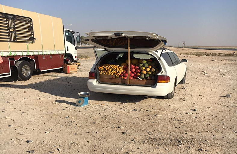 بلدية مدينة أبوظبي تنفذ حملات تستهدف مظهر المدينة في منطقة الفلاح الجديدة والقديمة
