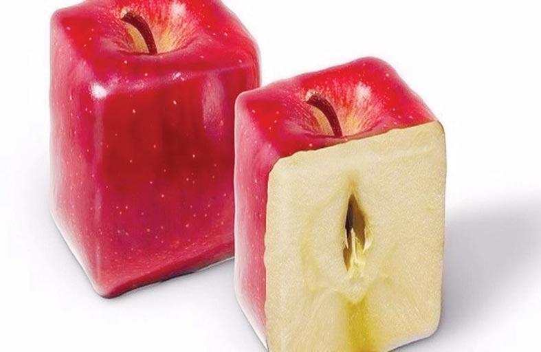 إنتاج فاكهة بأشكال غير تقليدية