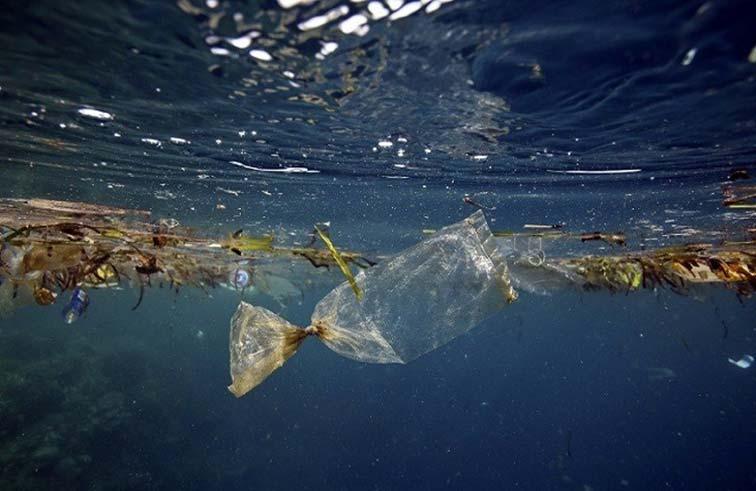 300  مليار قطعة بلاستيكية تسبح في المحيط المتجمد