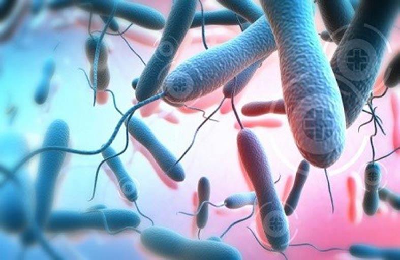 العلماء يكتشفون موطن  وباء الكوليرا
