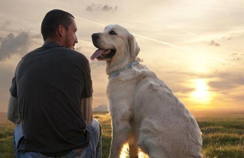 منصة تواصل بين البشر والكلاب