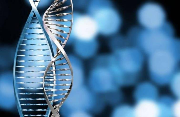 ثلثا أنواع السرطان نتيجة أخطاء جينية عشوائية