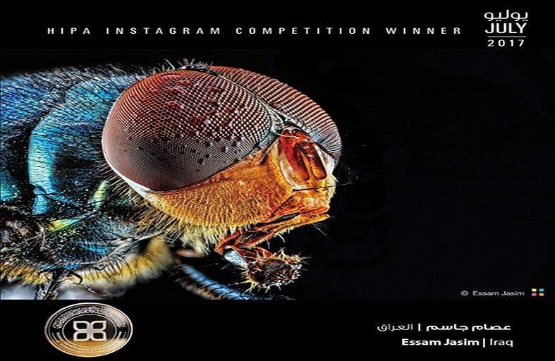 جائزة حمدان بن محمد للتصوير تعلن الفائزين بمسابقة التصوير المقرب