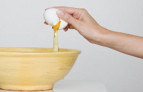 بلاستيك حيوي مضاد للبكتيريا من زلال البيض