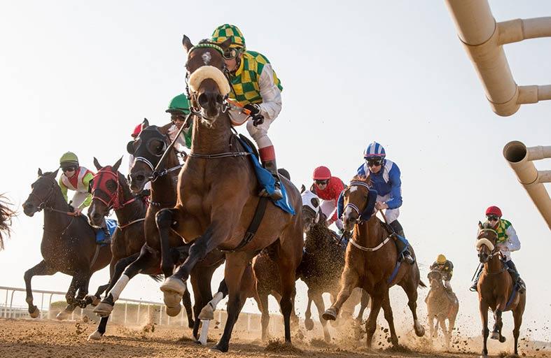 «الشارقة للفروسية » يحتضن اليوم سباق كأس سلطان بن خليفة