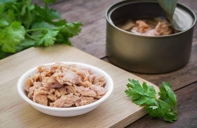 التونة .. أرخص بروتين لعلاج 5 مشاكل صحية