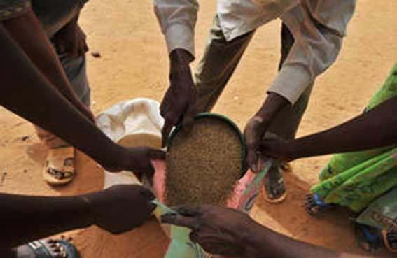 الأمم المتحدة تطلب 116 مليون دولار لمكافحة الجوع في الساحل