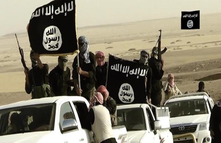 لا تخاض الحرب على الإرهابيين كما تخاض بين الدول