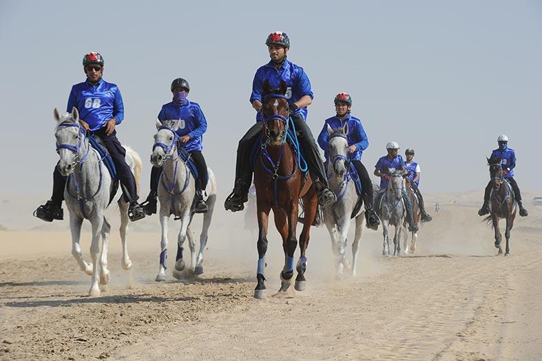 سباق كأس سلطان بن زايد الدولي للقدرة 240 كم ينطلق في بوذيب اليوم