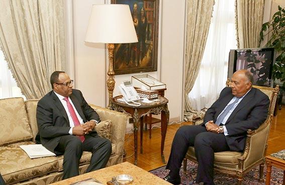 وزير الخارجية المصري وسفير الدولة يبحثان علاقات البلدين