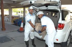 أسواق بلدية دبي تتوقع استقبال 300 ألف رأس ماشية 2018