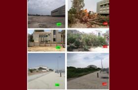 بلدية مدينة أبوظبي تنفذ خطة لإزالة العشوائيات الزراعية الخطيرة في جزيرة أبوظبي