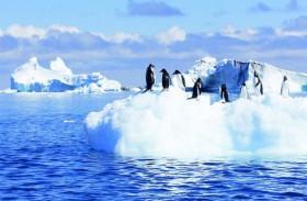 «الحر» في ألاسكا بأعلى درجات في تاريخها