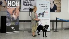 الكلاب لاكتشاف المصابين بكورونا بهذا المطار