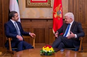 عبدالله بن زايد يلتقي رئيس وزراء مونتينيغرو