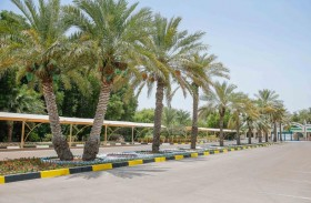 بلدية مدينة أبوظبي تجمّل مدخل منتزه الشريعة للسيدات وترتقي بالمظهر العام لإسعاد المجتمع