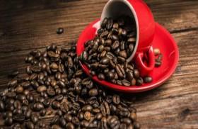 القهوة لتمييز الروائح في متاجر العطور