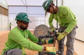 « إيليت أجرو للمشاريع » الإماراتية تطبّق ابتكارات في التكنولوجيا الزراعية في الدولة وخارجها