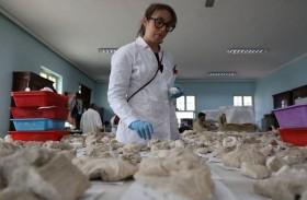 متحف أفغاني يرمم آثارا بوذية