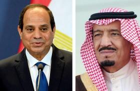 دول عربية: السعودية مملكة العدل والإنصاف