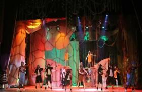 14 فرقة مسرحية بمهرجان الإمارات لمسرح الطفل