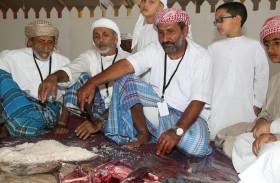«مهرجان المالح والصيد البحري» ينطلق غداً في مدينة دبا الحصن