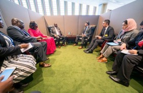 عبدالله بن زايد يلتقي النائب الأول لرئيس جنوب السودان