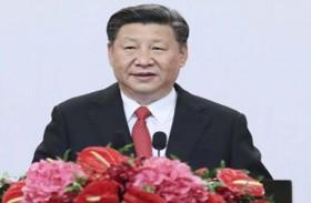 الرئيس الصيني : الإمارات واحة التنمية في العالم العربي