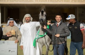 «المركز الأول» عنوان مربط دبي في المنافسات
