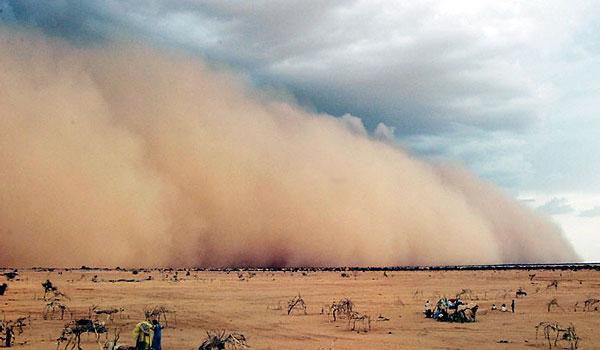 أبوظبي تستضيف اليوم الاجتماع الإقليمي الفني التنسيقي المعني بمكافحة العواصف الرملية والغبار في المنطقة
