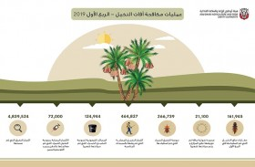 «الزراعة والسلامة الغذائية» تجرى مسحاً لنحو  4,8 مليون نخلة لتحديد النخيل المصابة بالآفات